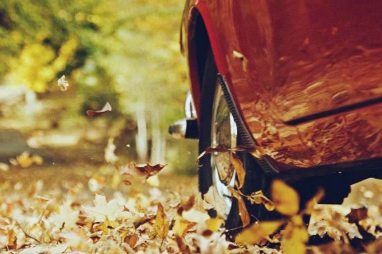 A shot of Irv's car driving through autumn leaves